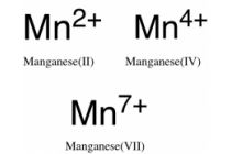 Manganese in Drinking Water — Water Library | Acorn Water