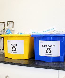 Yellow and Blue Recycling Bins
