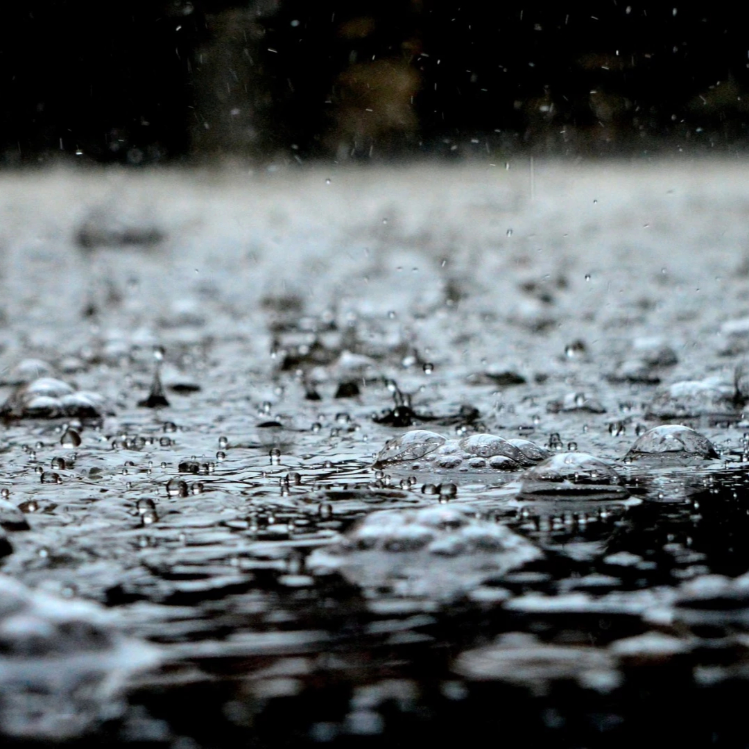 rain falling on a path