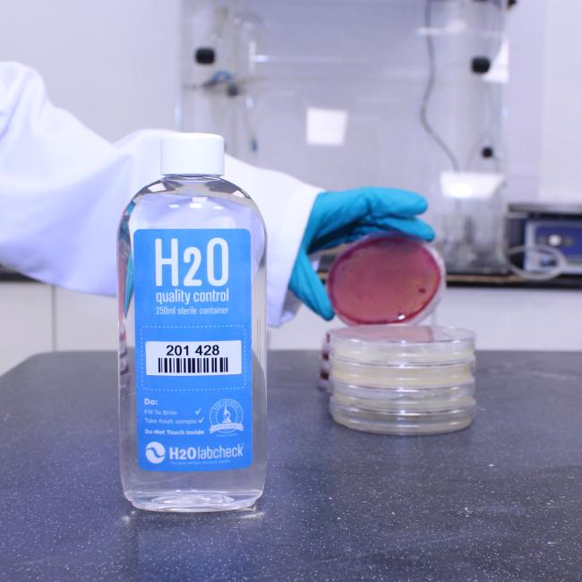 Cyanobacteria Test